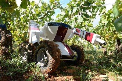 ربات هوشمند آبیاری در کالیفرنیا